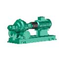 SCP-Pumps